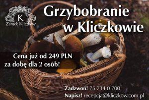Grzybobranie 2018 w Zamku Kliczków